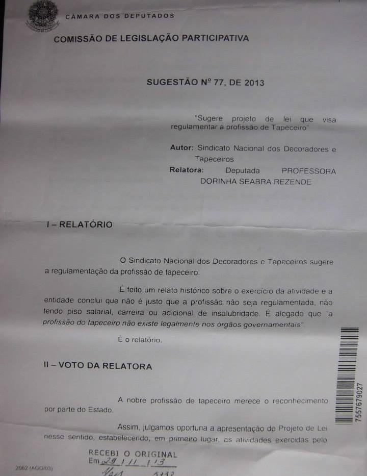 Regulamentação da Profissão (21).jpg