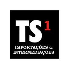 TS1.jpg