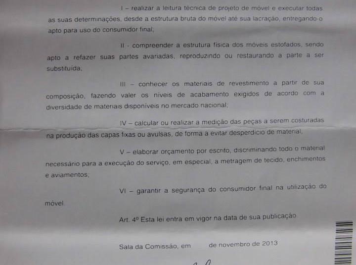 Regulamentação da Profissão (23).jpg