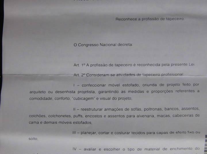 Regulamentação da Profissão (20).jpg