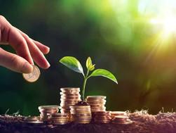 As COOPERINERs, que integram o Sistema INER, terão direito a crédito de carbono