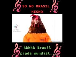 Galo é detido... Só no Brasil mesmo