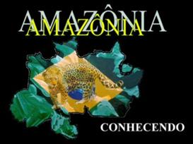 Conheça a Amazônia - o maior patrimônio mundial