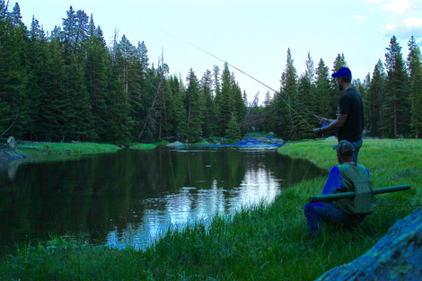 Anatomy of a Fly Fisherman Part 1: The Fly Rod