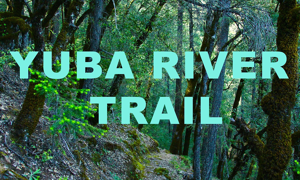 North and South Yuba River Trail