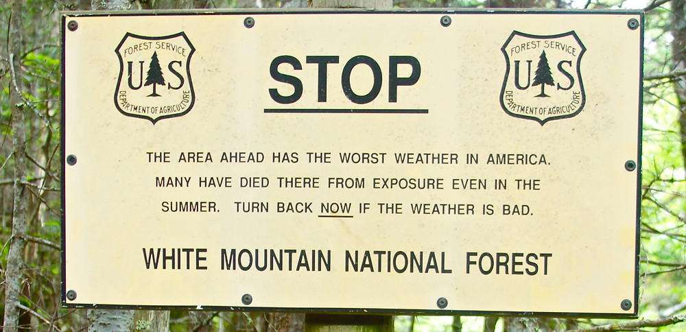 A Sign Found At Tree Line