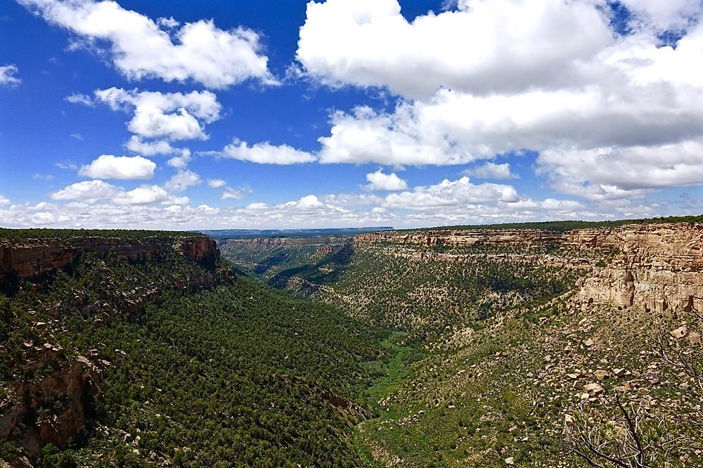 Mesa Verda Landscape