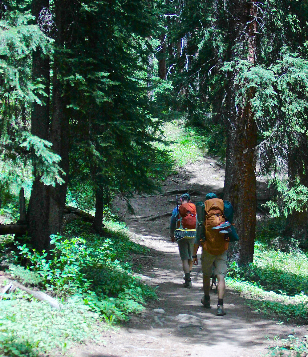 Hikers use the buddy system on the trail