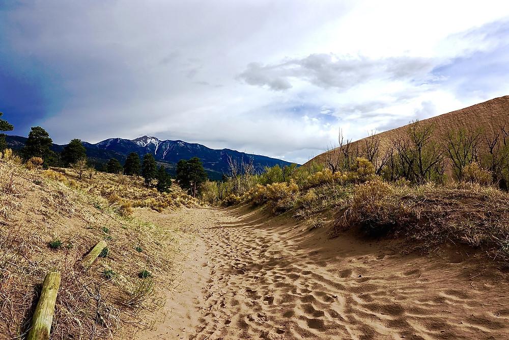 Trail Through Great Sand Dunes