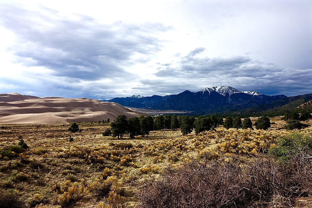 One of Many Scenes in Great Sand Dunes