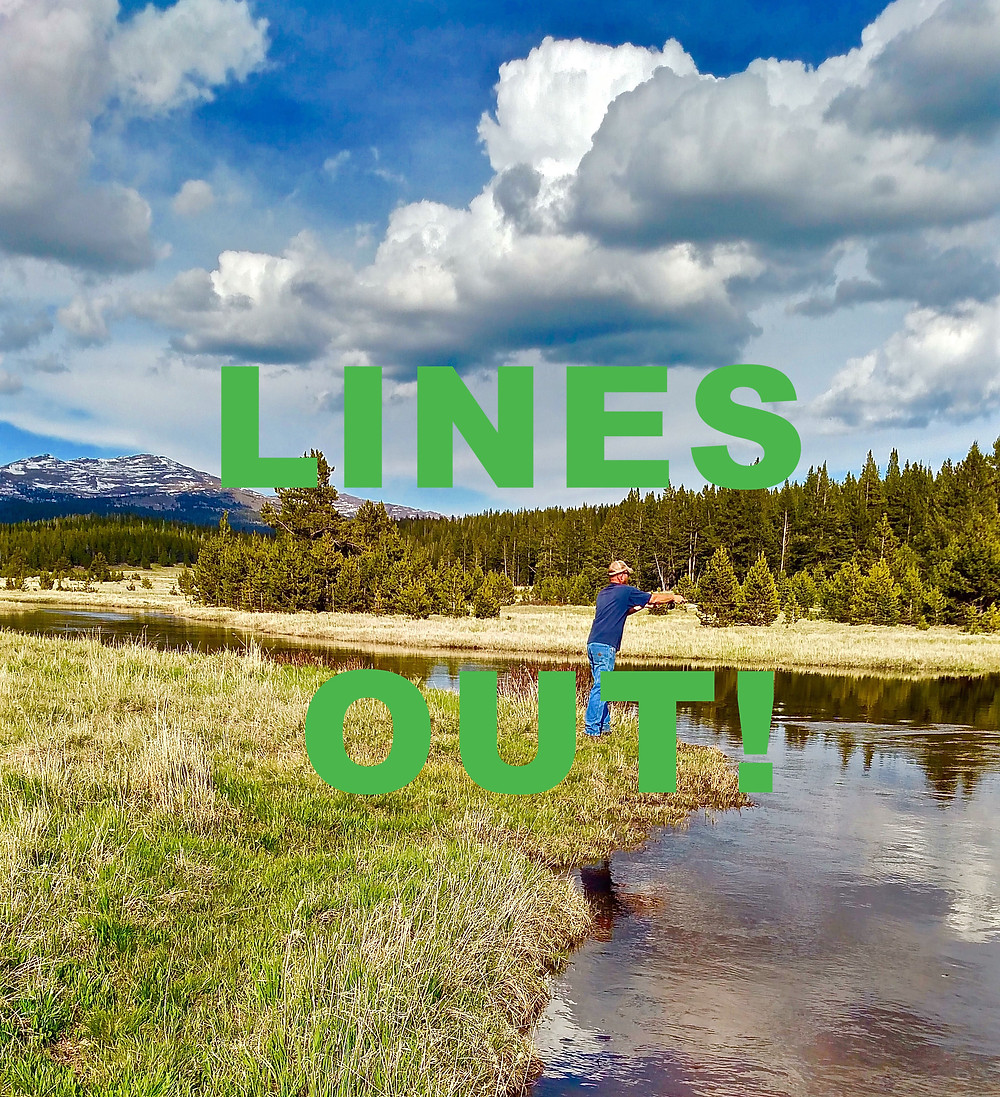 Lines Out!