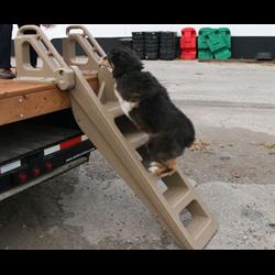Dock Ladder for Sale.png