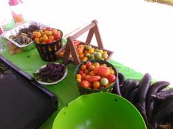 WEB market food demo 049