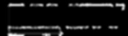 лого экосити.png