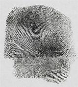 fingerprint[1].jpg