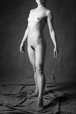 bodies_6997