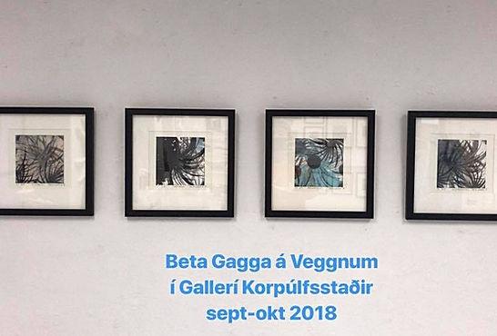 beta gagga sept 2018_edited.jpg