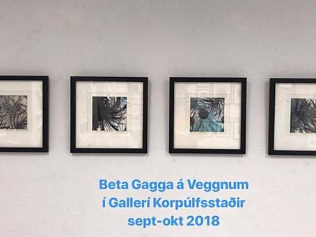 """""""Undir sólargeisla"""" - Beta Gagga - Elísabet Stefánsdóttir"""