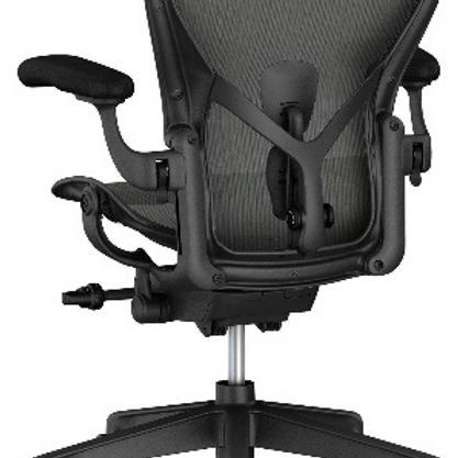 GoPro Aeron Posture Fit Chair - Graphite