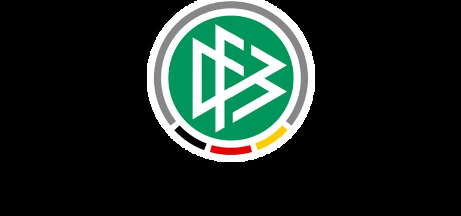 DFBnet Logo.png