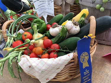 Project Self-Sufficiency gardens won at blue ribbon at the New Jersey State Fair.