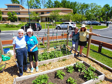 Project Self-Sufficiency gardens are maintained by volunteers.