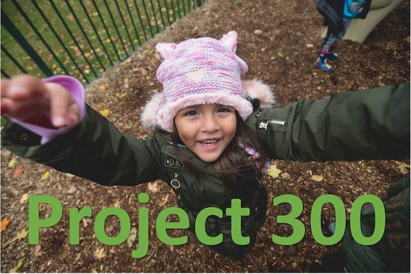 Project 300 Graphic.jpg