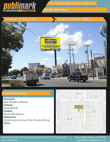 Blvd. Morelos Álamos - Vista 1