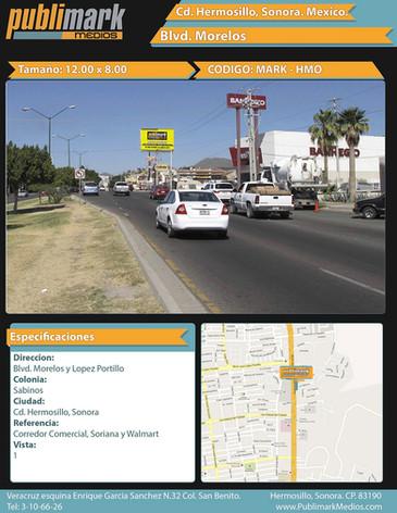 Blvd Morelos y Lopez Portillo - Vista 1