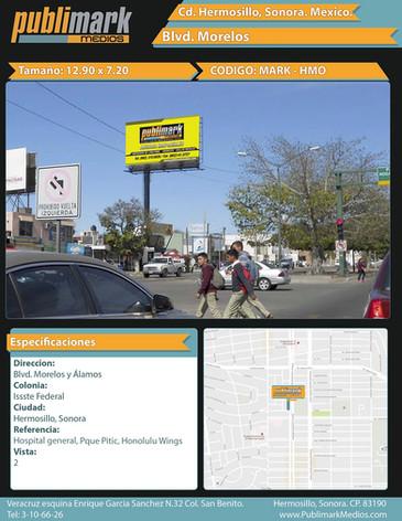 Blvd. Morelos Álamos - Vista 2
