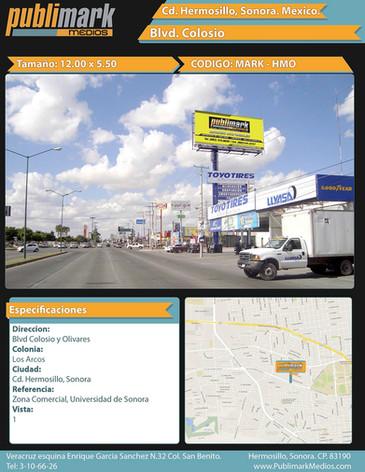 Blvd Colosio y Olivares - Vista 1