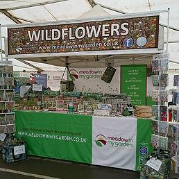 MIMG_Wildflowers.jpg