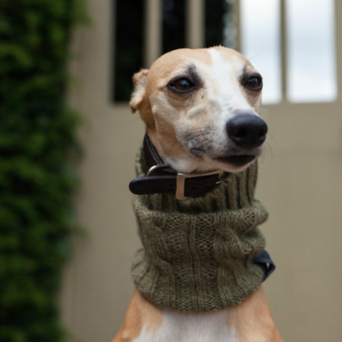 Dog Snood - Olive Green (medium)