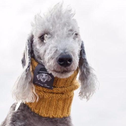 Dog Snood - in English Mustard (medium)