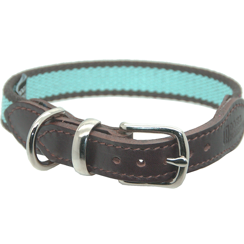 Dogs & Horses Cotton Webbing Collar (More Colours)