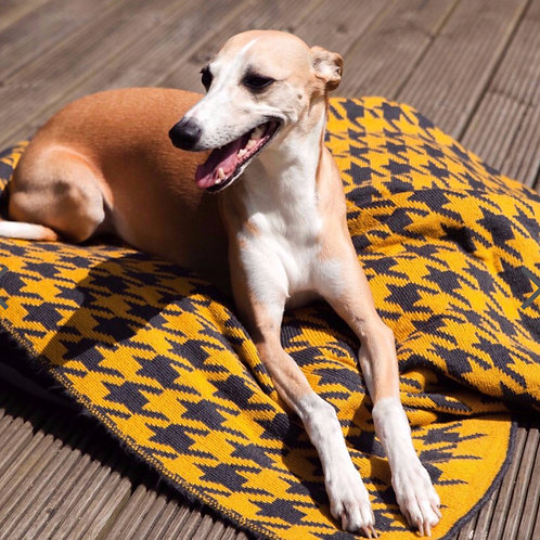 Dog Blanket - in English Mustard and Anthracite (Large)