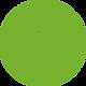 insta_flat_green.png
