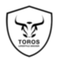 Houston Toros Badge Logo 4.jpg