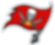 kisspng-tampa-bay-buccaneers-nfl-logo-at