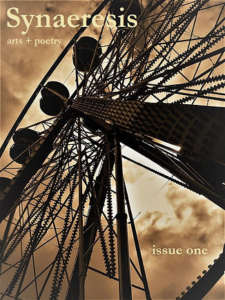 synaeresis issue one front cover alt.jpg