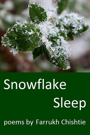 snowflake sleep (2).jpg