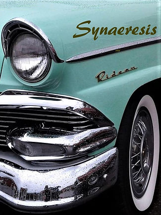 Synaeresis 8 Front Cover.jpg