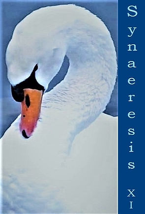 Synaeresis 11 Front Cover alt.jpg