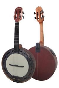 Banjo Estilo.jpg