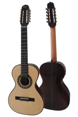 Viola Cinturada Concertista.jpg