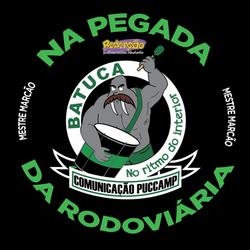 PucCampa.png
