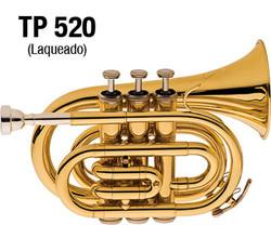 TP-520-01.jpg