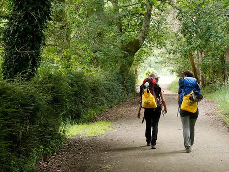 Emprender durante El Camino de Santiago