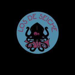 logo_los_de_seiche_bleu_rose_sans_fond_web_edited
