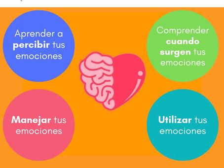 Cuatro claves de inteligencia emocional para la vida diaria